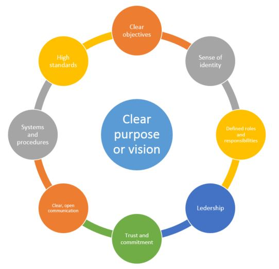 Support the purpose and objectives of the team in schools